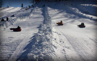Splendid Snowy Spots